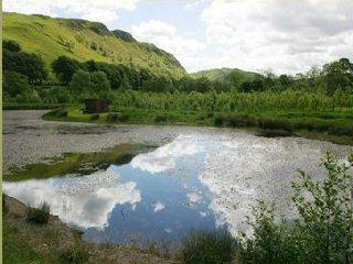 Balbeg pond in summer