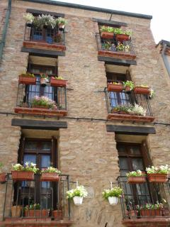 Pretty window boxes, typical of the region