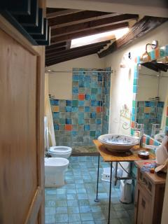 the bathroom and shower