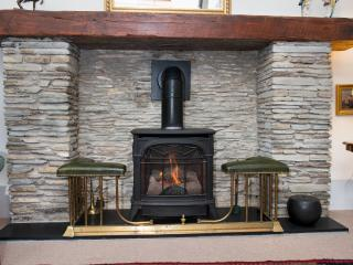 Gas log-effect stove