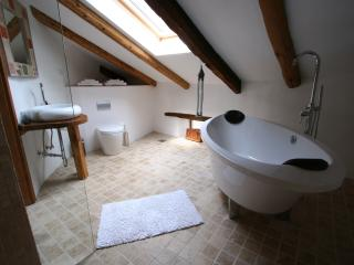 The master bed room en suite, with shower and double bath tub