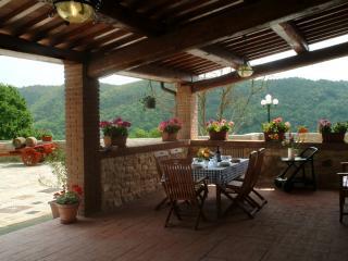 Villa il Castellaccio in Greve in Chianti - flat 3, Lucolena