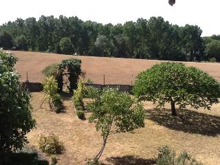From garden towards surrounding fields