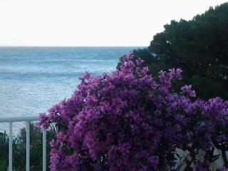 Vista del mare di fronte casa