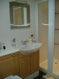 modern shower room with double sized shower cubicle, fitted basin and W.C.