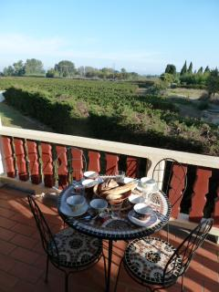 Balcony with vineyard views to St Marcel
