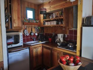 La cuisine tout équipée ouverte sur le salon (plaque de cuisson, four, lave-vaisselle...)