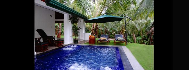 Brook Estate Villa Private Jacuzzi Pool.