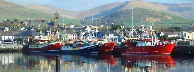 Dingle Harbour - a short stroll away.