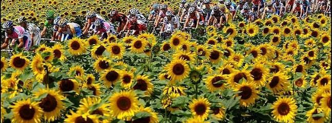 The Tour de France takes place nearby each summer.