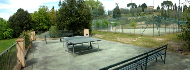 Table tennis and tennis court yard