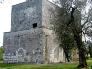 Tenuta Sant'Andrea - Civetta
