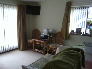 Comfortable sitting area with TV and view of garden, patio and BBQ area.