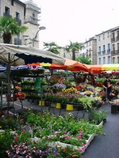 Stroll round the traditional market at Pezenas