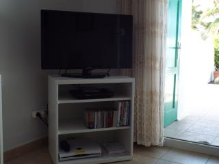 TV with english speaking channels and a DVD player