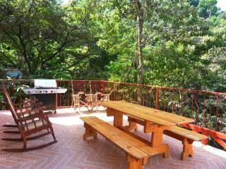 5-7 BR Villa Jacana - monkeys, rain forest & ocean views!!
