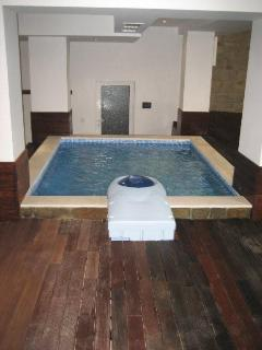 Ice Cold Plunge Pool, sauna's and steam room.