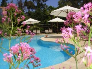 Enjoying the large heated pool at guesthouse Aux Merveilleux in Grimaud