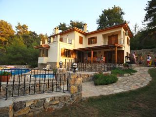 Yamac Villa, Yesiluzumlu