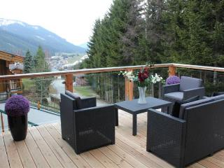 Large self catering private 3 bedroom log chalet with beautiful mountain views.