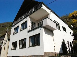 Mosel Wine Region Villa  in heart of Mosel Moselkern