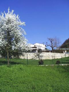 The property in the spring
