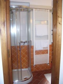 The shower in the bathroom.