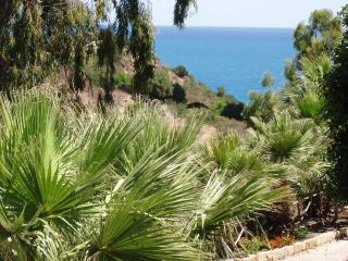 Olive House to explore Sicily (A), Cefalu
