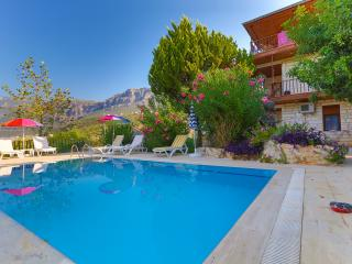 6 PEOPLE SEA & SUNSET VIEW APT. WITH POOL IN KAS, Kas