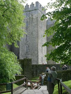 Bunratty Castle 40 Minutes away