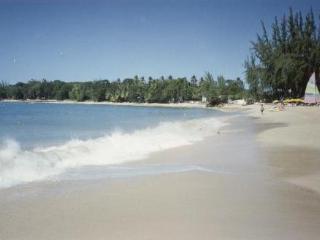 Walk for miles along the sandy coral beach, West Coast, Caribbean Sea.