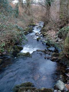 Small stream  (Scottish word, burn) running through cottage garden