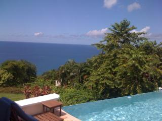 Windjammer Landing Villa Beach Resort, villa with private infinity pool;
