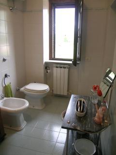 Bathroom in main house
