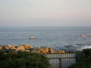 from garden, sea view / direct access to the sea