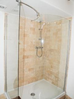 Downstairs family shower