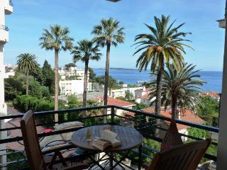 Apartment des Pins- Sleek 1 Bedroom Cannes Apartment with a Terrace