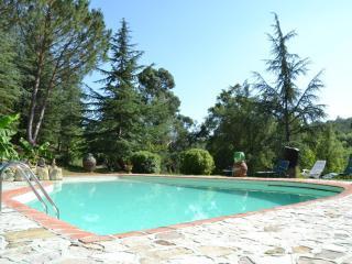 Vintage Apt Tuscany/pool/Wi-Fi, Montevarchi