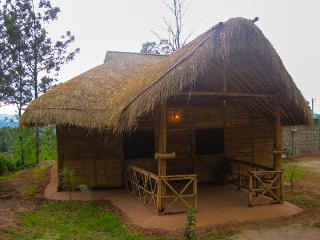 Bamboo cottages in madikeri