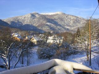 Vue depuis la terrasse de la Maison d'Hôtes Les Coukis sur le Rossberg (1200m)