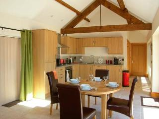 LITTLE HENDRE LODGE, luxury wheelchair-friendly lodge with woodburner, Monmouth Ref 905365
