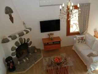 sitting room, 2 sofas, fireplace, airconditioning, 40'' flat screen tv, dvd, wifi internet