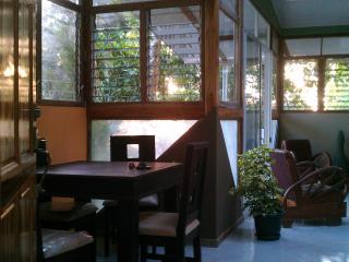 Cosy Toop Tree Jungle apartment