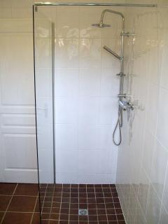 the walk in shower
