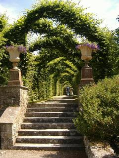 The Formal Gardens, Birr Castle Demesne.  The Bothy has a gate straight into this part of the garden