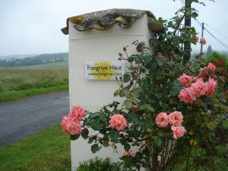 Welcome, you have arrived at Fongrive!!