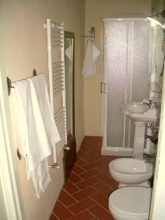 The fully equipped bathroom with shower and hairdryer