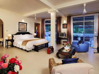 Spacious villas with  private swimming pool at Long Hai