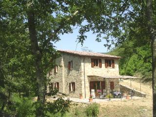 Mulino Le Vigne - in peaceful natural  location, Castel Rigone