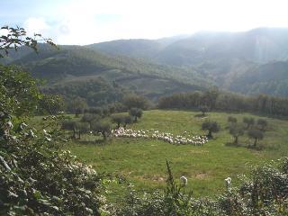 Beautiful rural setting
